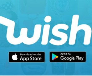 Wish – Shopping Made Fun Apk Free on Android