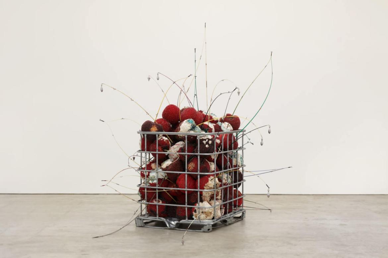 box of cherrys by Kathleen Ryan