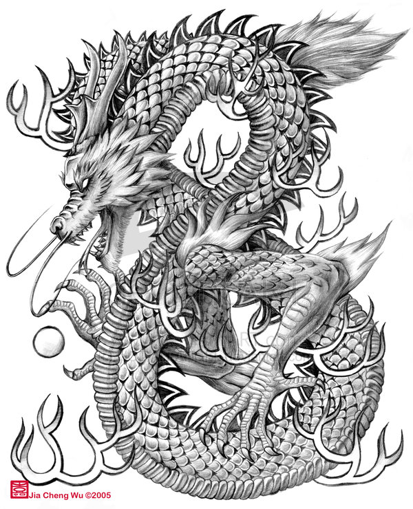 Chinese Dragon Sketches