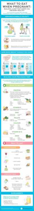 Best Infographic About Pregnancy 12