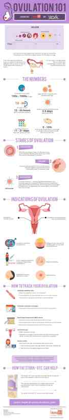Best Infographic About Pregnancy 43