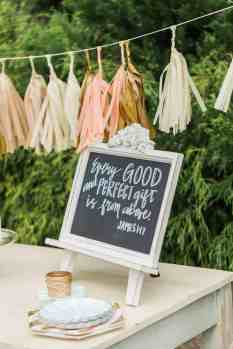 Gender Reveal Party 15