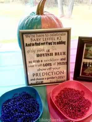 Gender Reveal Party 59