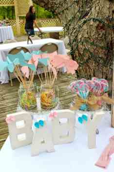 Gender Reveal Party 80