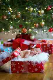 Newborn Christmas Pictures 17