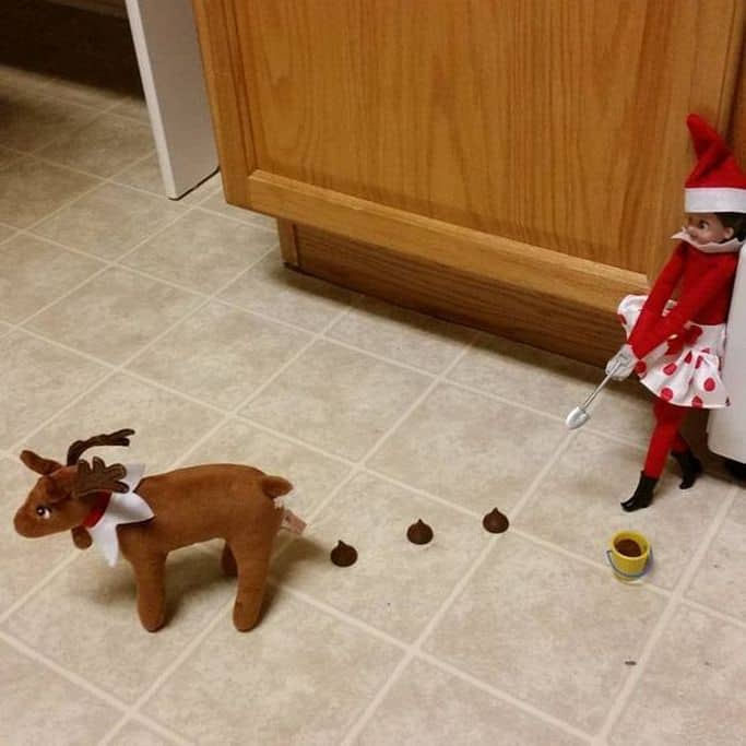 Elf On The Shelf 5 Result