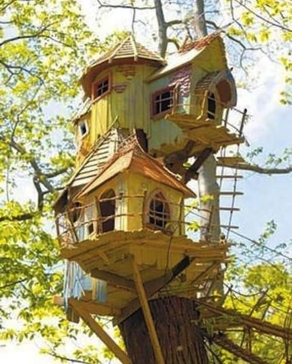 Treehouse 2 Result