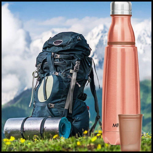 MILTON Stainless Steel Water Bottle With Tumbler