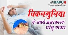 चिकनगुनिया के सबसे असरकारक घरेलु उपचार | chikungunya in hindi