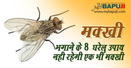 Makkhi Bhagane ke Gharelu Upay