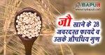जौ खाने के 28 जबरदस्त फायदे व उसके औषधिय गुण | Benefits of Barley( jau )in Hindi