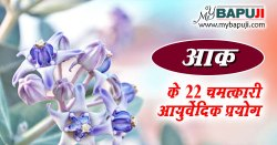 आक (मदार) के 22 चमत्कारी फायदे  | Aak Ke Fayde in Hindi