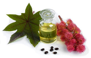 castor oil benefits and side effects