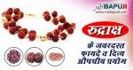 रुद्राक्ष के जबरदस्त फायदे व दिव्य औषधीय प्रयोग | Rudraksha ke Fayde