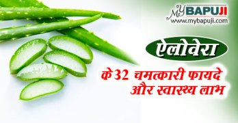 Aloe vera fayde aur nuksan gun aur upyog in hindi