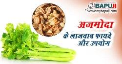 अजमोदा के औषधीय गुण ,फायदे और नुकसान | Ajmoda Ke Faayde Aur Nuksan