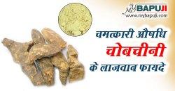 चोबचीनी के फायदे ,गुण ,उपयोग और नुकसान | Chobchini ke Fayde aur Nuksan in Hindi