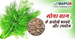 सोया के फायदे ,औषधीय गुण ,उपयोग और नुकसान | Dill Benefits in Hindi
