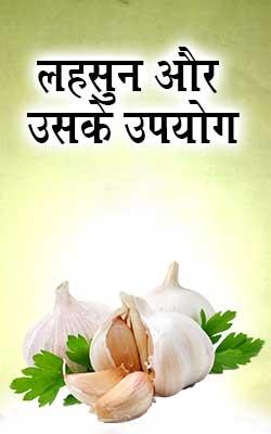 लहसुन और उसके उपयोग | Lahsun Aur Uske Upyog