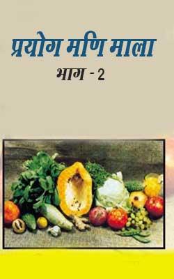 Prayog Mani Mala Part-2 Hindi PDF Free Download