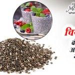 chiya bij ke sehatmand fayde aur nuksan in hindi