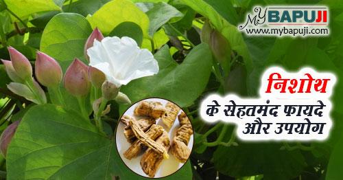 Nishoth ke Fayde Gun Upyog aur Nuksan in Hindi