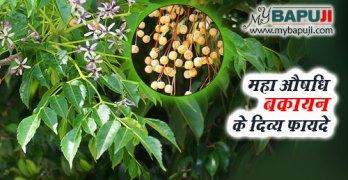 bakayan ke fayde gun upyog aur nuksan in hindi