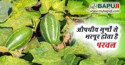 परवल के औषधीय उपयोग और लाभ – Pointed gourd in Hindi