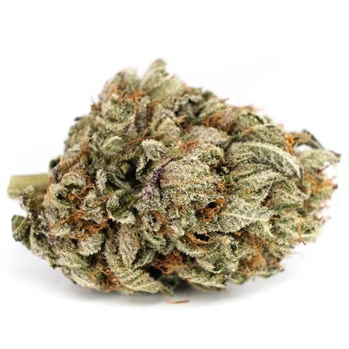 white widow hybrid cannabis flower