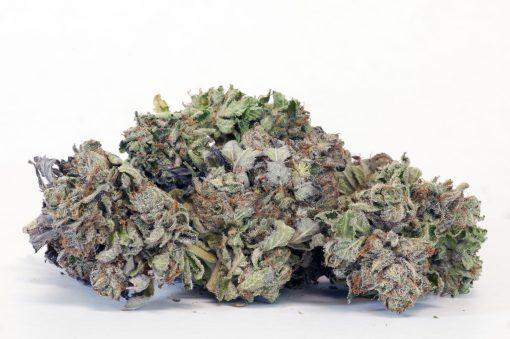 Ice-Wreck-Hybrid Cannabis