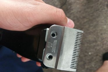 How to sharpen clipper blades without a stone, Sharpening clipper blades with salt, How to sharpen clipper blades with aluminum foil, How to sharpen clipper blades with wire brush, Best Sharpener for clipper blades, Learn to sharpen clipper blades, How to sharpen horse clipper blades, Sharpen clipper blades service,