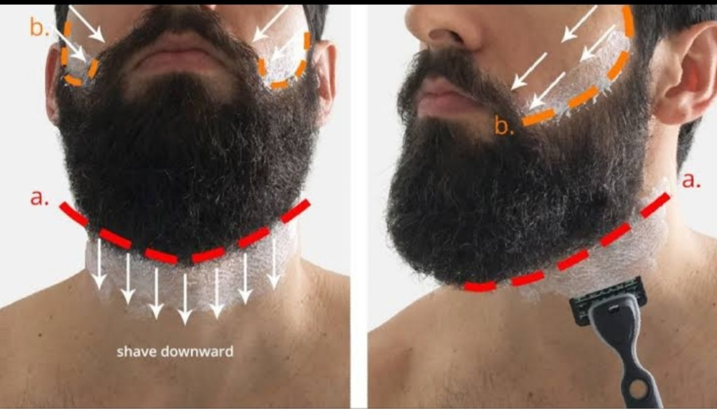 Where to shave when growing Beards