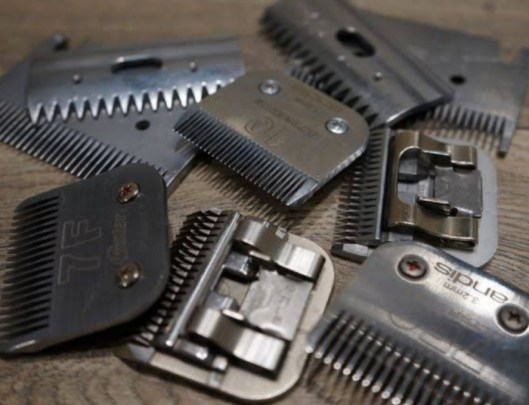 learn to sharpen clipper blades, how to sharpen clipper blades with aluminum foil, how to sharpen clipper blades without a stone, how to sharpen clipper blades with wire brush, best stone for sharpening clipper blades,