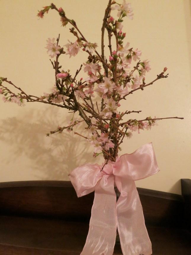 Winter Flowering Cherry blossom