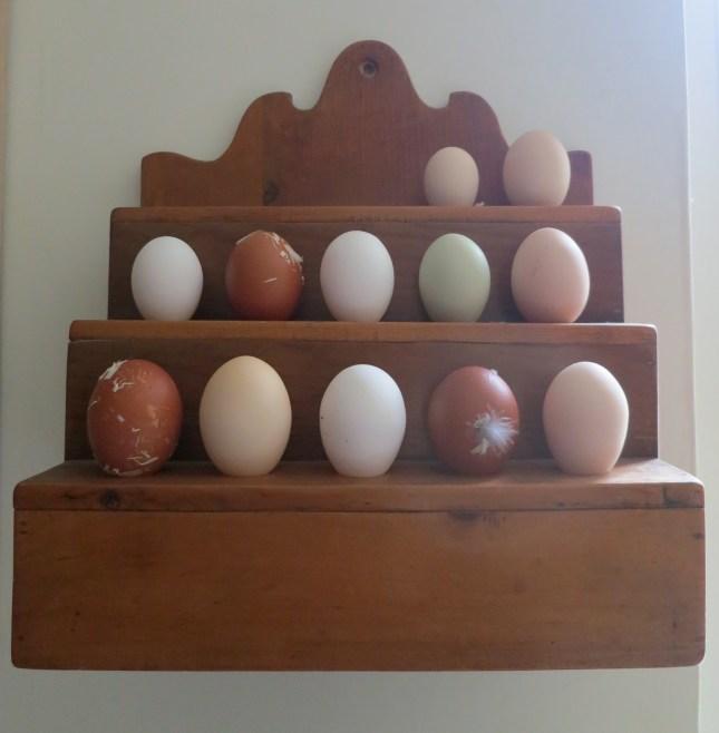 Varieties of eggs