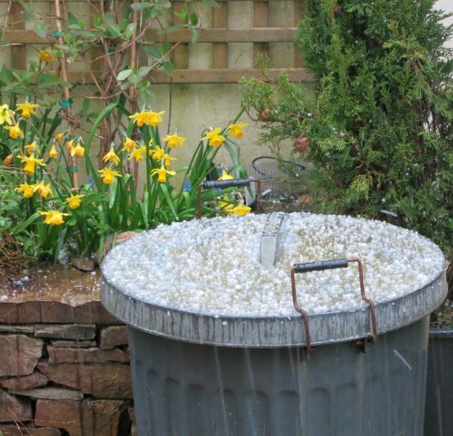 Hailstones on the dustbin