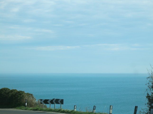 View of the sea as we left Heligan