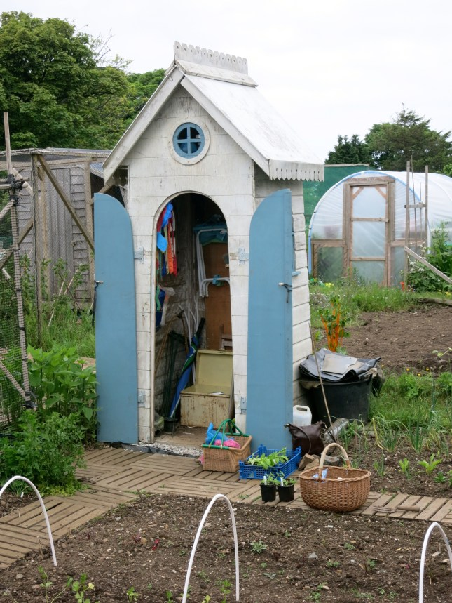 The best garden shed ever