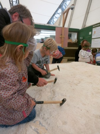 Young paleontologists