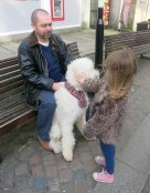 T stroking a beautiful Golden Doodle called Cara, only 9 months old!