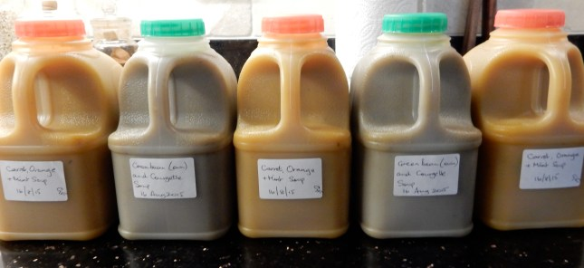 Soups in pint containers, ready to freeze