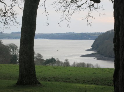 Carrick Roads from Trelissick