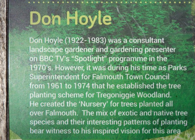 About Don Hoyle