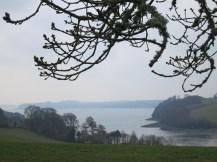 Fal estuary from Trelissick