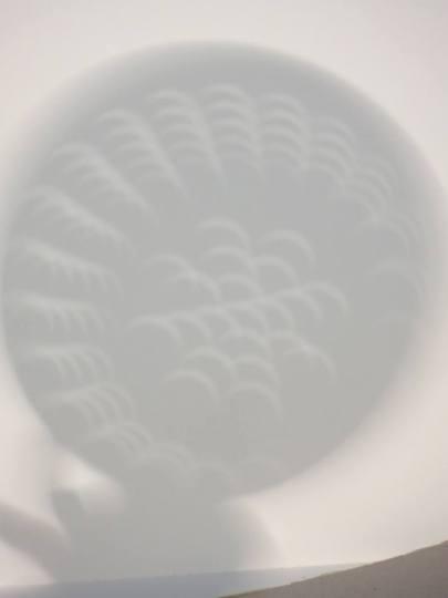 Eclipse through the colander