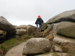 Clambering about