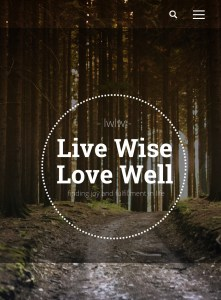 Live Wise Love Well - bloggers to help you slay motherhood