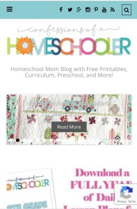 Confessions of a homeschooler - bloggers to help you slay motherhood