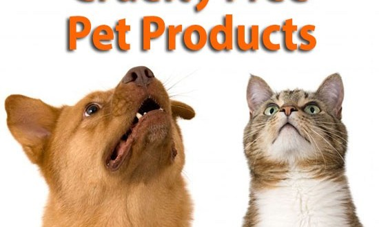 cruelty free pet products