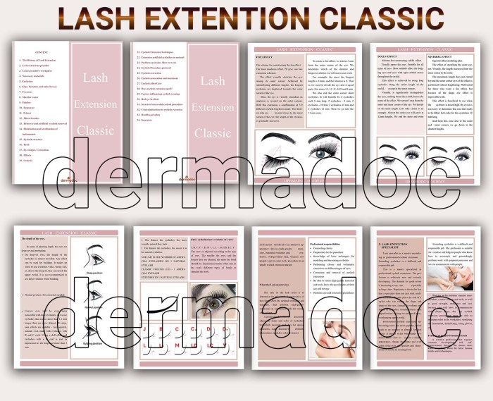 online lash extension course usa and canada